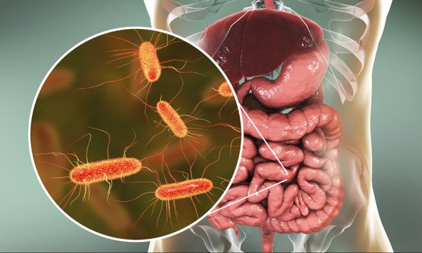 Manusia dengan Bakteri